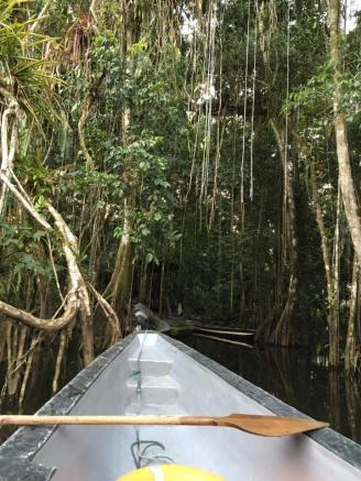 Amazon River's headwater near Quito, Peru